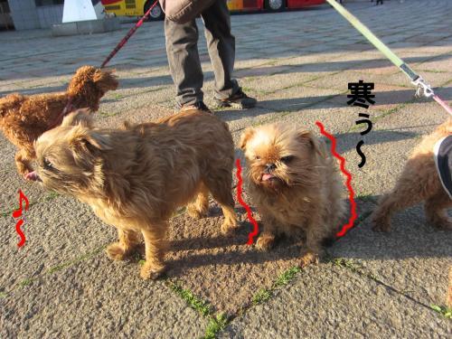 2_convert_20120328083952.jpg