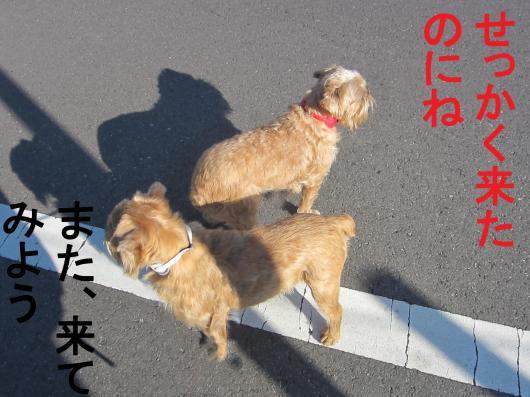 3-0_convert_20111219072412.jpg