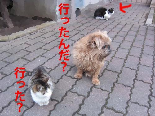 3-0_convert_20120306080049.jpg