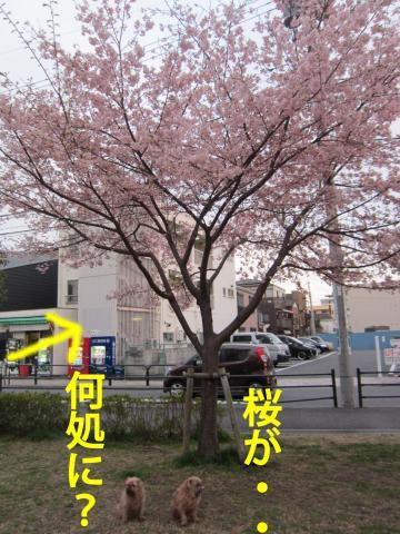30_convert_20120327083926.jpg