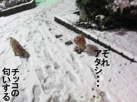 3_convert_20120124071212.jpg
