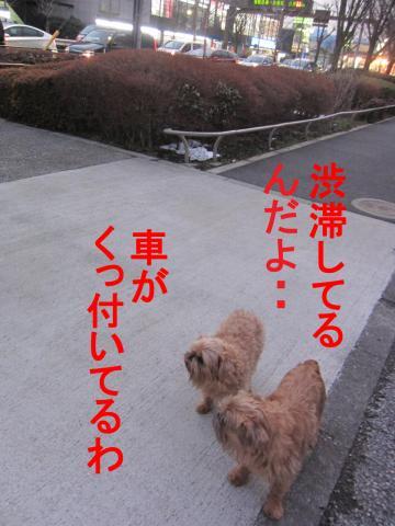 3_convert_20120302080414.jpg