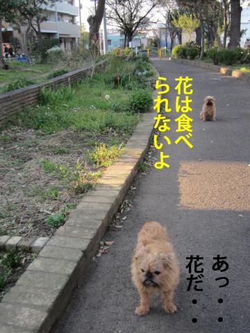 3_convert_20120410072135.jpg