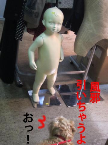 404_convert_20120318091328.jpg