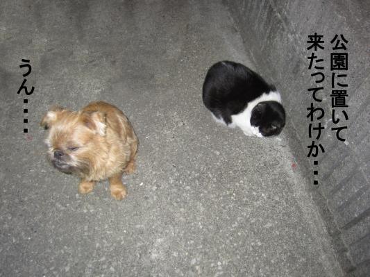 4_convert_20120116074155.jpg