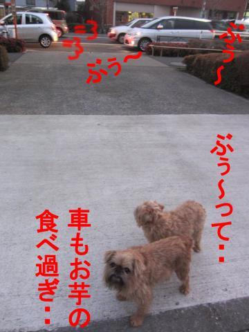 4_convert_20120302080431.jpg