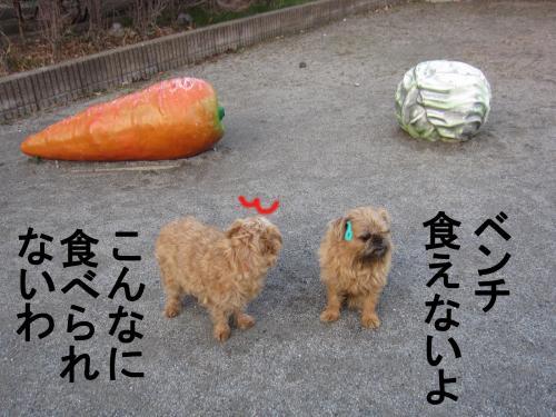 4_convert_20120304083114.jpg