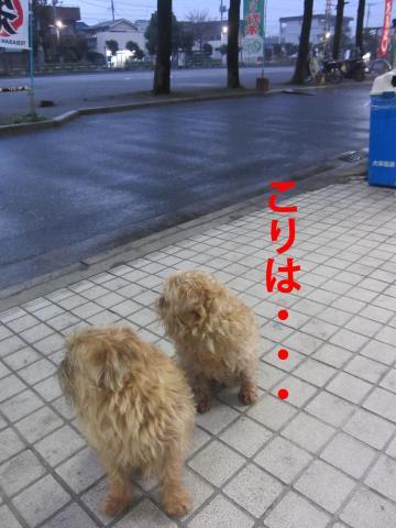 4_convert_20120319084913.jpg