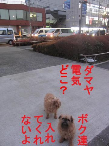 5_convert_20120302080447.jpg