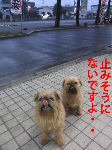 5_convert_20120319084935.jpg