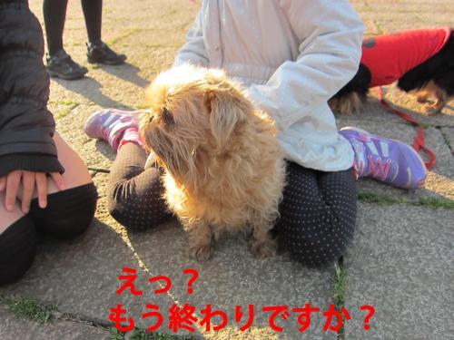 5_convert_20120328084224.jpg