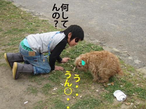 5_convert_20120411081303.jpg