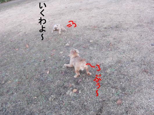 6-0_convert_20111222070353.jpg