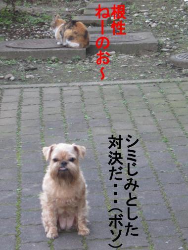 66_convert_20111129040704.jpg