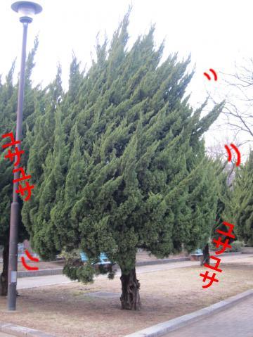 66_convert_20120215081413.jpg