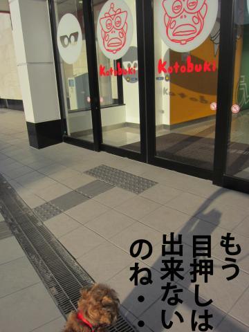 6_convert_20120317081609.jpg