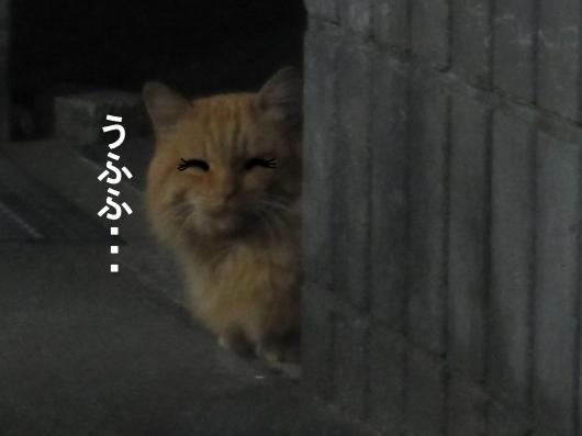 7-0_convert_20120102063501.jpg