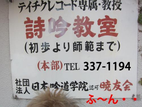 70_convert_20120321091034.jpg