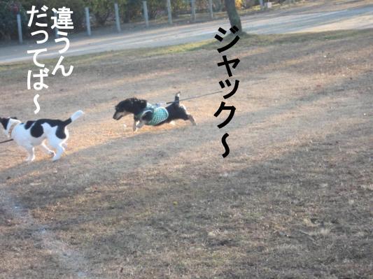 77_convert_20120103073434.jpg