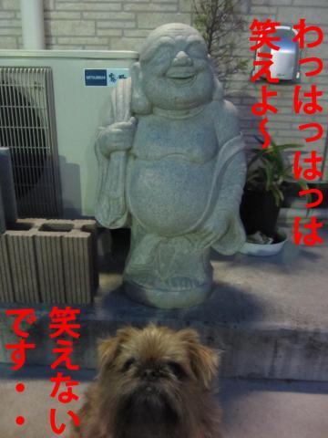 7_convert_20120402120055.jpg