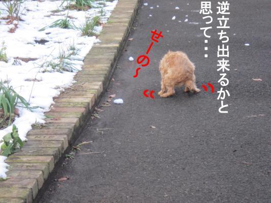 8-0_convert_20120125075236.jpg