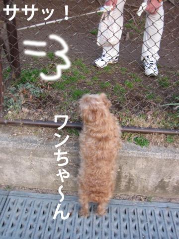 9I_convert_20120316090616.jpg