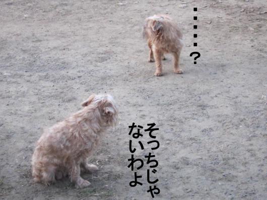 E_convert_20120121075517.jpg