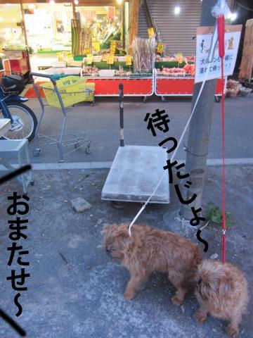 F_convert_20120406091234.jpg