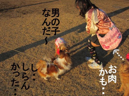G_convert_20120223085941.jpg