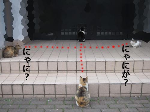 I_convert_20120417090519.jpg
