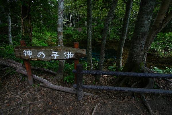 15_20111124135007.jpg