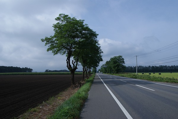16_20120109172938.jpg