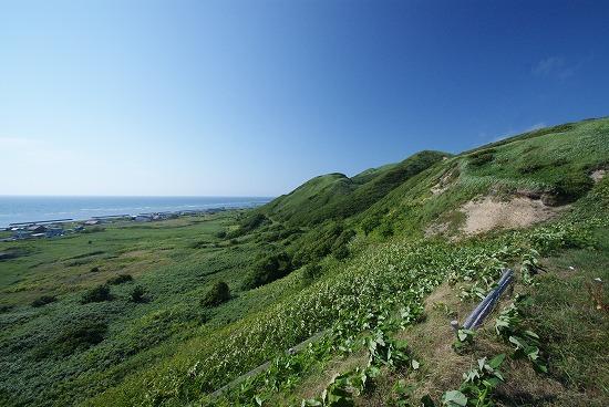 利尻島 35