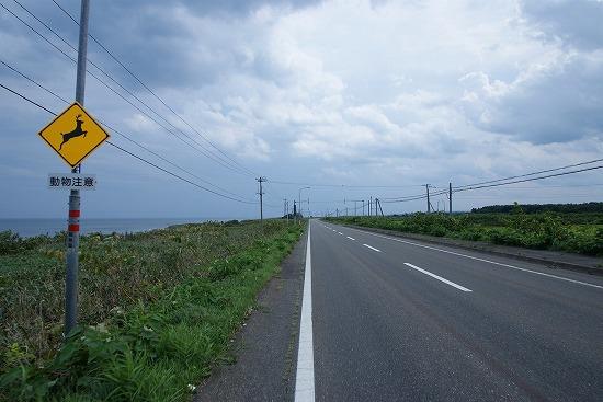 8_20111028201226.jpg
