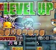 Maple111225_214930.jpg