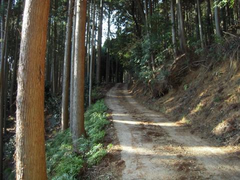 kamiyoshi_03.jpg