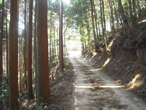 kamiyoshi_06.jpg