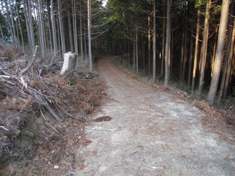 kamiyoshi_37.jpg