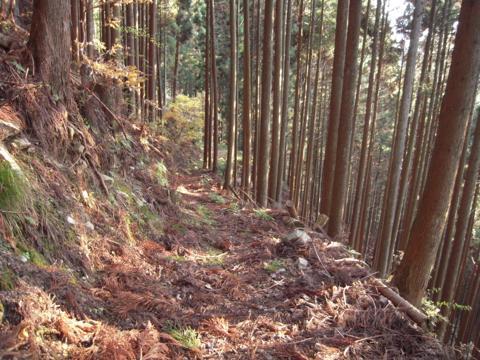 kamiyoshi_53.jpg