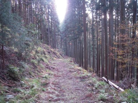 kamiyoshi_57.jpg