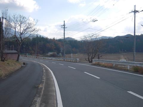 momiji_01.jpg