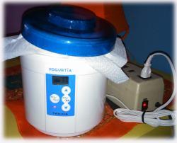 yogurtia