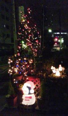 セラミックのブログ-クリスマス2008
