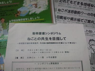 CA3F1042.jpg