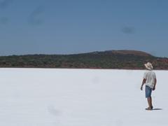 幻想的なゲイドナー塩湖