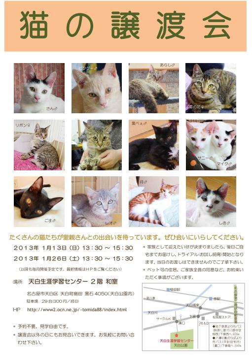 猫の譲渡会チラシblog用2013-1