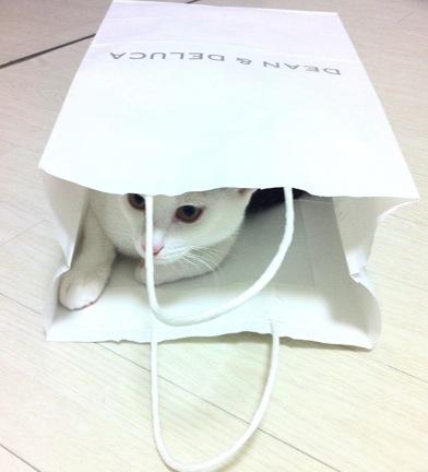 マイク紙袋