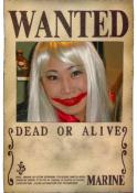 One_Piece_Wanted_Poster_by_.jpg