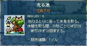 Maple120419_211204.jpg