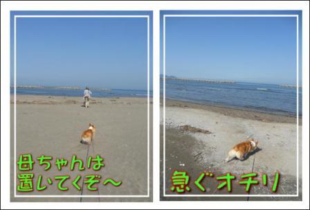 さっさと海に行きたいの~